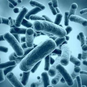 """Учен инжектира древни бактерии, за да """"удължат живота"""""""