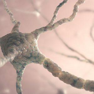 Мръсният въздух образува в мозъка магнитни аномалии