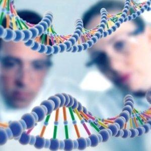 Откриха  ДНК от непознат вид в хората
