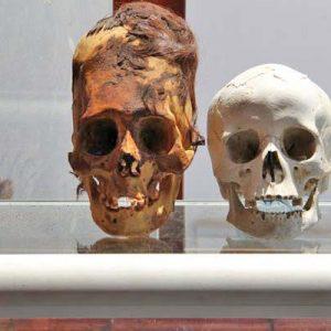 Мистериите на удължените черепи