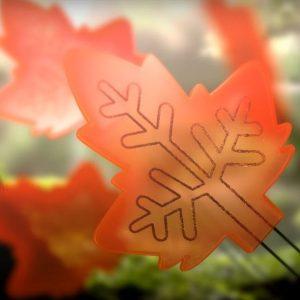 Полимерните листа се научиха на фотосинтеза
